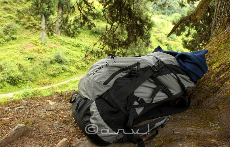 wildcraft-savan-d-45-rucksack-review-curated-experiences-impressions